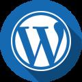services_web_wp_300px